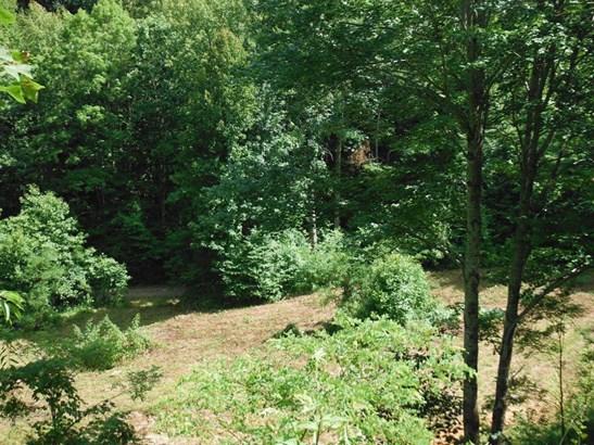 1212  Mcclure Creek , Canton, NC - USA (photo 2)