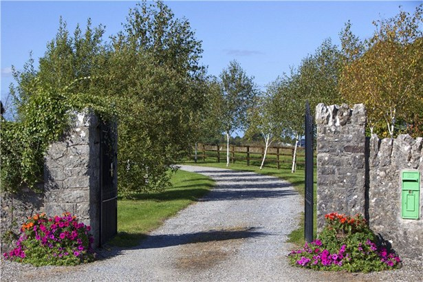 Croagh, Adare - IRL (photo 3)