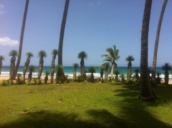 Coson, Samana - DOM (photo 1)