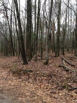 0 Oak Drive, Pine Mountain, GA - USA (photo 2)