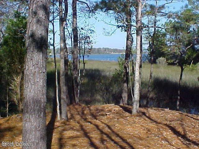 308 Lane, Swansboro, NC - USA (photo 1)