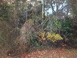 113 Circle, Pine Knoll Shores, NC - USA (photo 1)