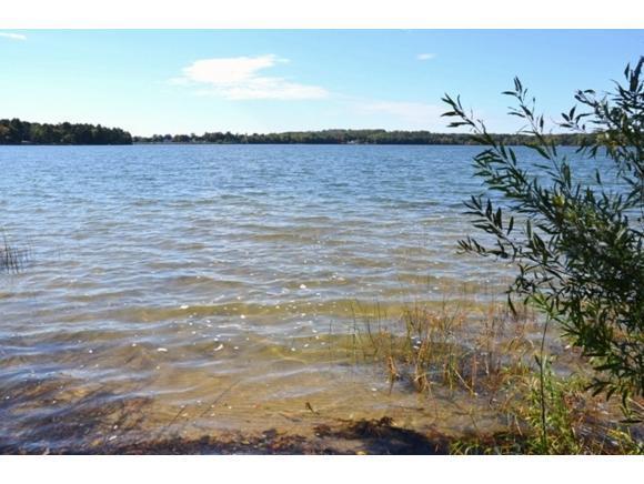 Shoreline (photo 2)