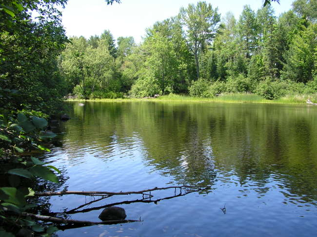 Pelican River (photo 3)
