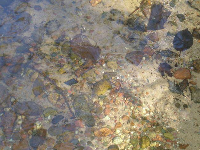 361 Feet Sand & Stone Frontage (photo 2)