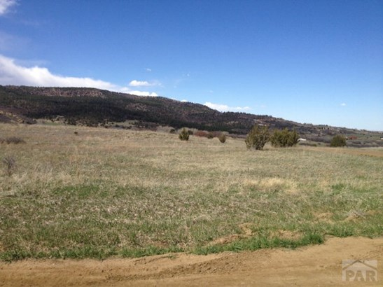 Single Family Land - Colorado City, CO (photo 1)