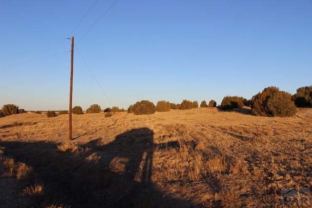Single Family Land - Pueblo, CO (photo 4)