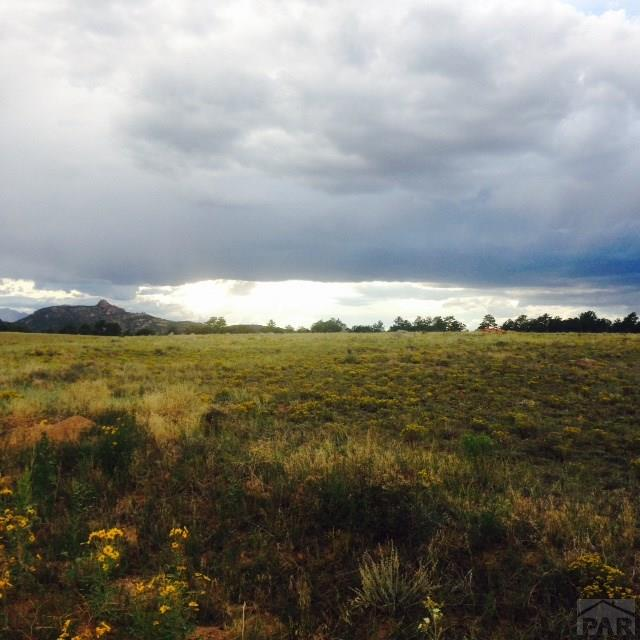 Single Family Land - Cotopaxi, CO (photo 2)