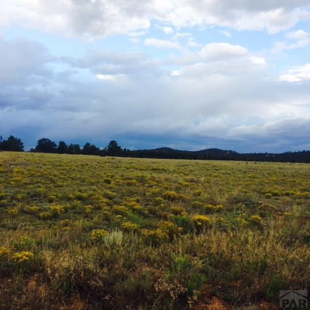 Single Family Land - Cotopaxi, CO (photo 3)