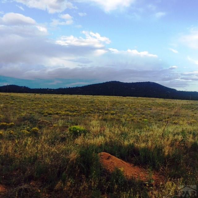 Single Family Land - Cotopaxi, CO (photo 4)