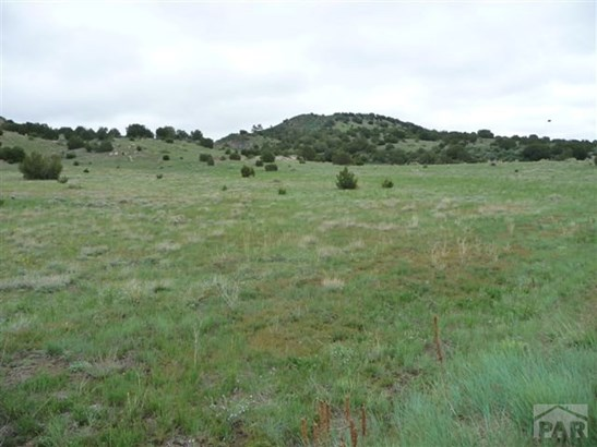 Single Family Land - Beulah, CO (photo 3)