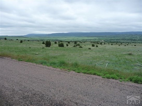 Single Family Land - Beulah, CO (photo 5)