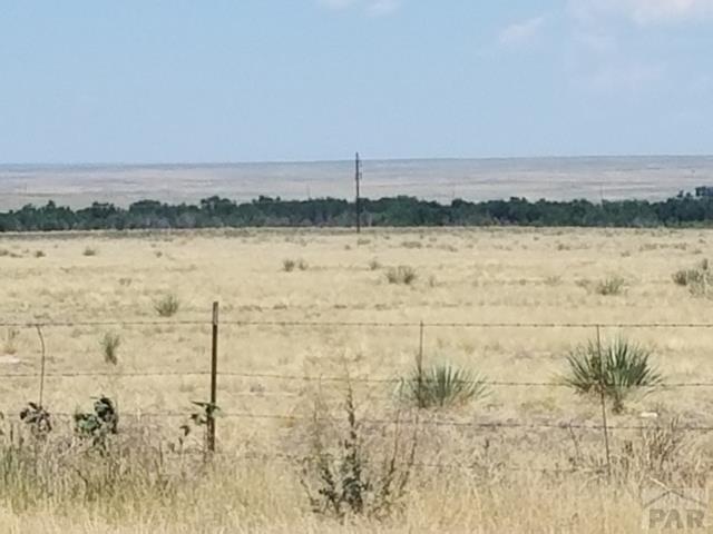 Single Family Land - Boone, CO (photo 2)
