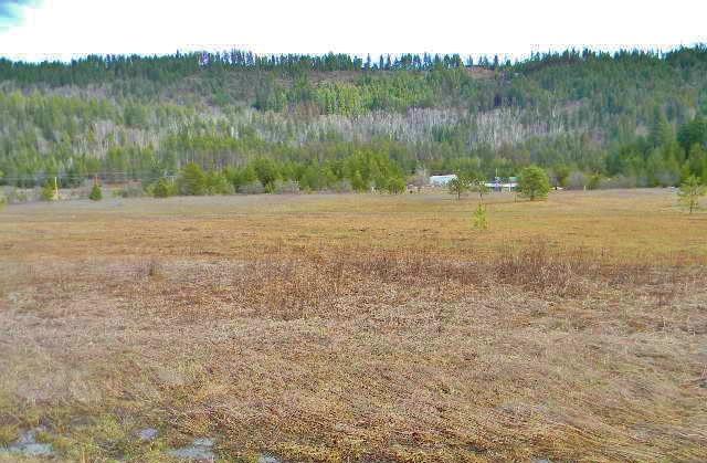 Lot 41 Larch Ln , Cusick, WA - USA (photo 5)