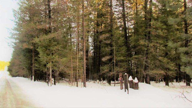 000 Henry Rd , Elk, WA - USA (photo 1)