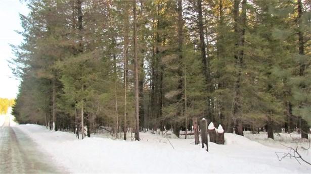 000 Henry Rd , Elk, WA - USA (photo 4)