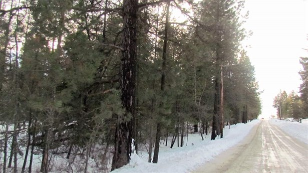 000 Henry Rd , Elk, WA - USA (photo 5)