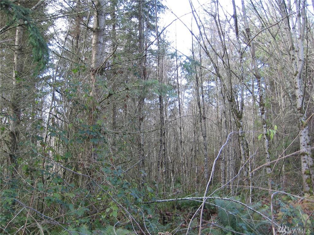 9050 Ne Nature Wy , Kingston, WA - USA (photo 5)