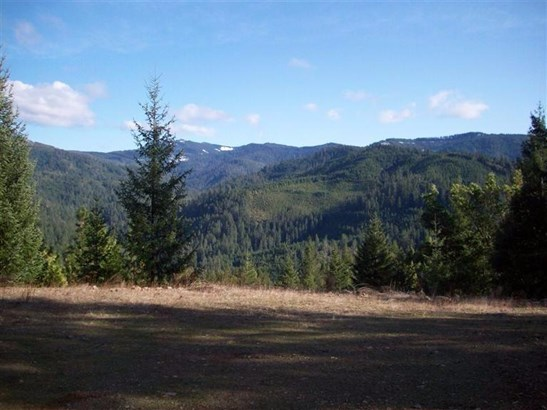 0 French Peak Rd , Cave Junction, OR - USA (photo 4)
