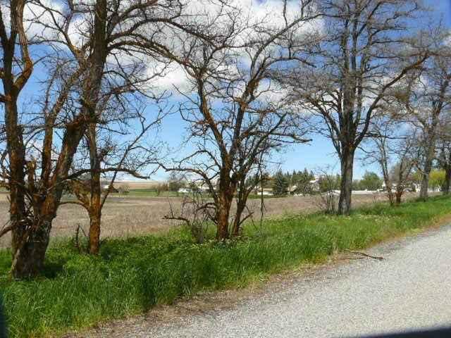 414 W Locust , Waterville, WA - USA (photo 2)