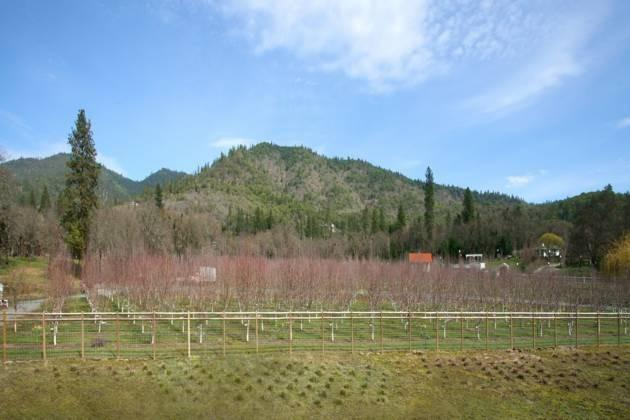 420 Ne Greenfield Dr , Grants Pass, OR - USA (photo 4)