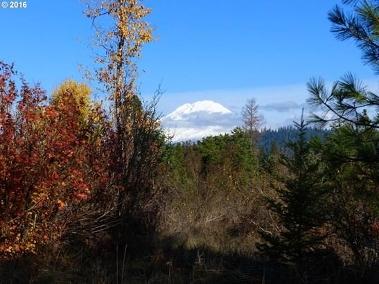 7 Pahtoe View , Trout Lake, WA - USA (photo 3)