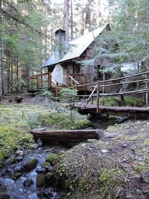 90 Silver Creek - Usfs , Greenwater, WA - USA (photo 3)