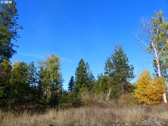 4 Pahtoe View Ln , Trout Lake, WA - USA (photo 3)