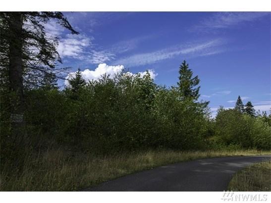 Lot 13 White Fir Way Dr , Port Hadlock, WA - USA (photo 4)