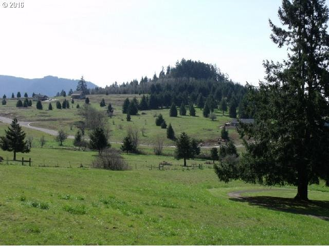 76709 Bugle Loop  Lot 6, Oakridge, OR - USA (photo 5)