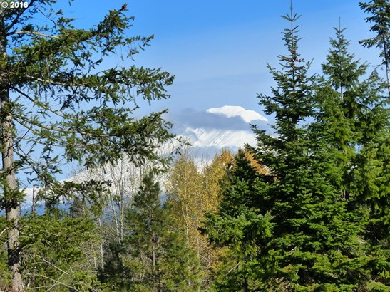 6 Pahtoe View Ln , Trout Lake, WA - USA (photo 3)