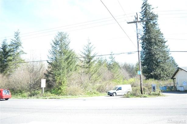 Old Hwy 99 Sw , Centralia, WA - USA (photo 3)