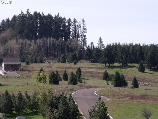 Bugle Loop  Lot58, Oakridge, OR - USA (photo 2)