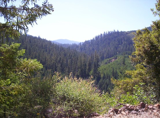 0 French Peak Rd , Cave Junction, OR - USA (photo 1)