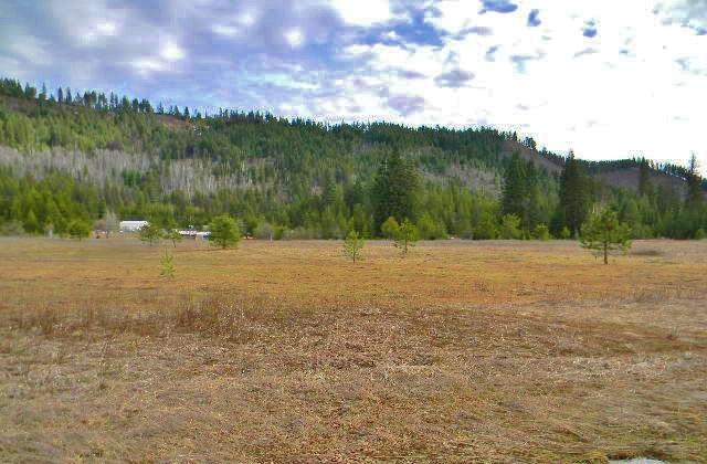 Lot 42 Larch Ln , Cusick, WA - USA (photo 5)