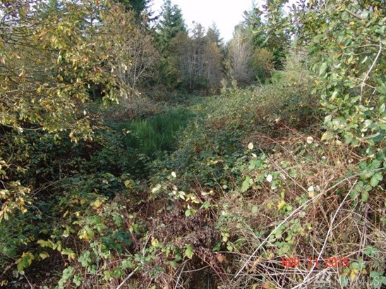 9.21 Acres On Olhava Wy Nw , Poulsbo, WA - USA (photo 3)
