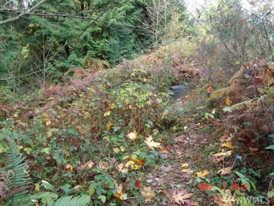 9.21 Acres On Olhava Wy Nw , Poulsbo, WA - USA (photo 4)