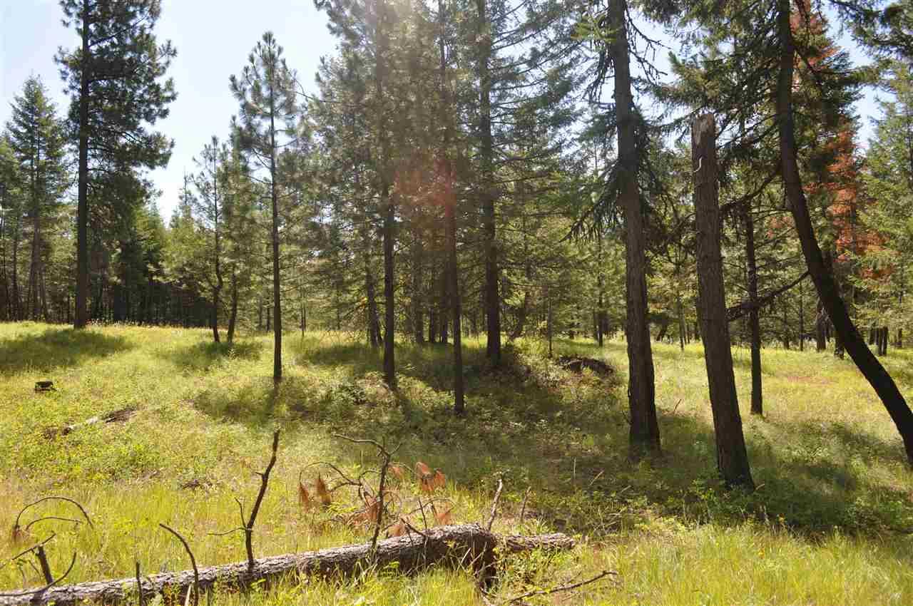 Parcel D Regal Rd , Elk, WA - USA (photo 2)