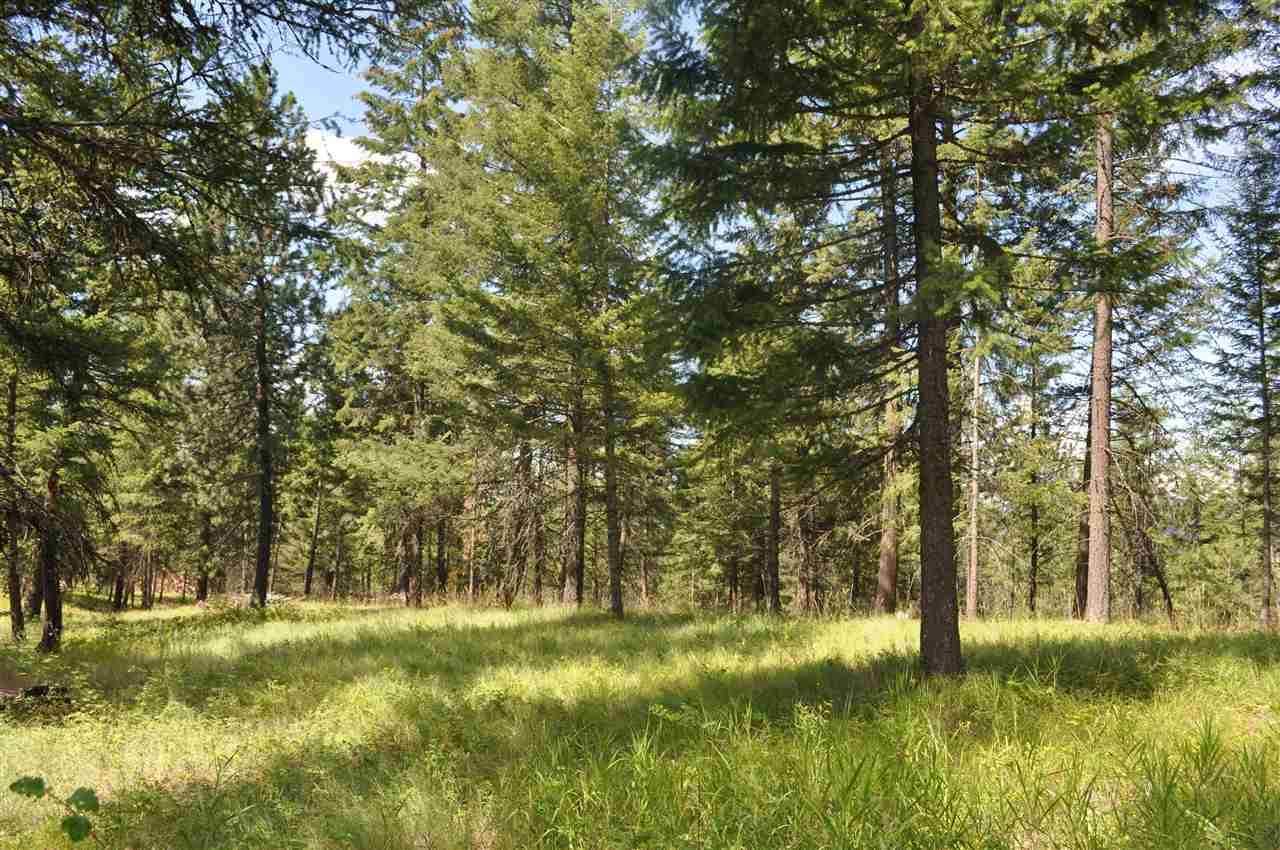 Parcel D Regal Rd , Elk, WA - USA (photo 3)