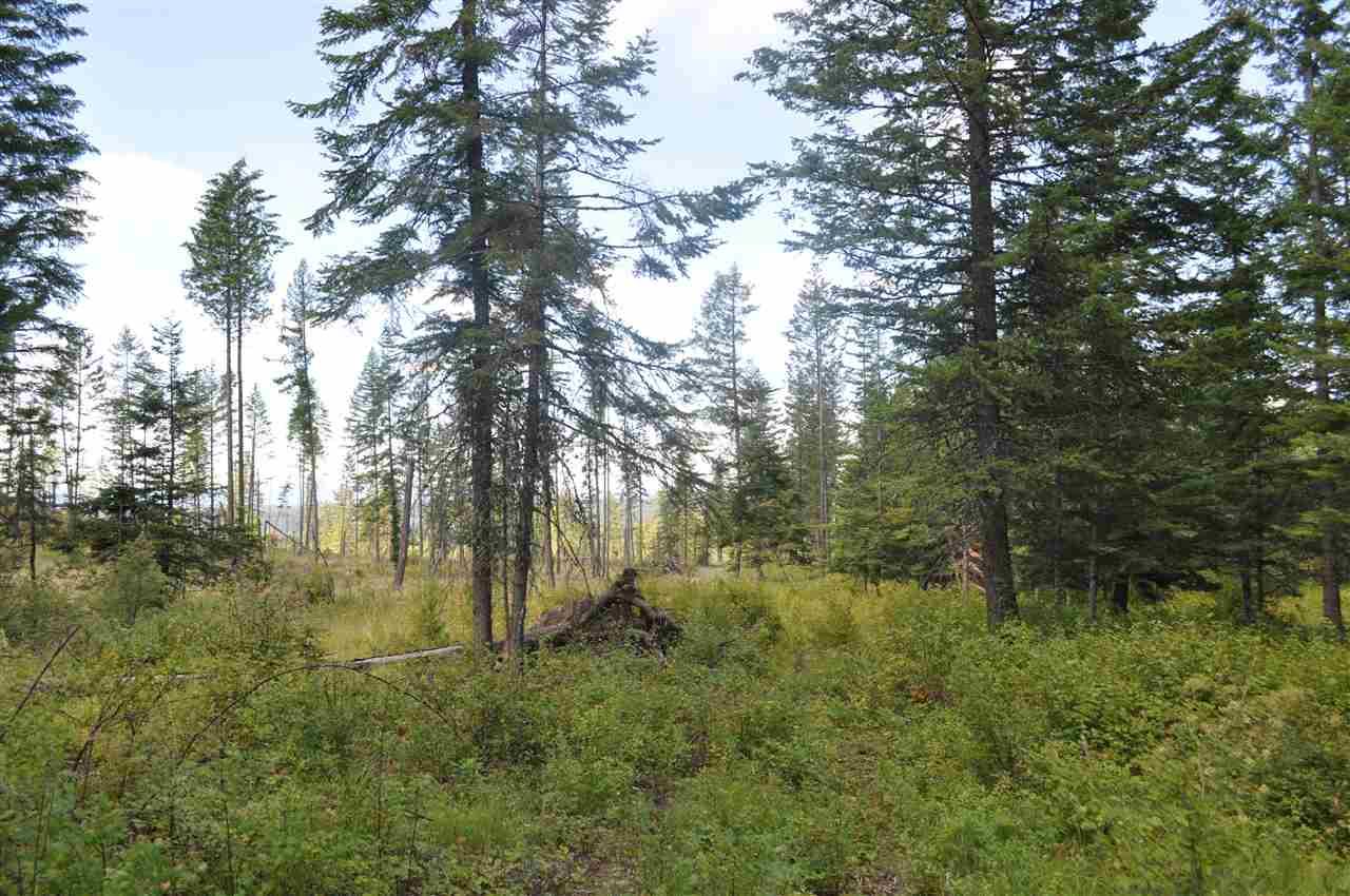 Parcel D Regal Rd , Elk, WA - USA (photo 4)