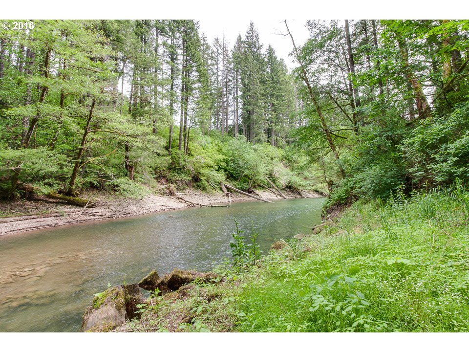 16521 Lewis River Rd , Cougar, WA - USA (photo 4)