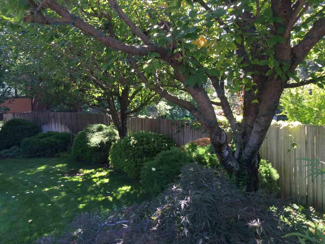 1612 S Crest Hill Dr , Spokane, WA - USA (photo 4)