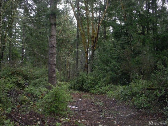 W Werner Rd , Bremerton, WA - USA (photo 3)