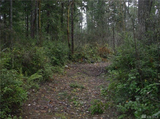 W Werner Rd , Bremerton, WA - USA (photo 4)