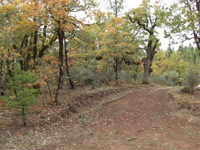 0 Danconia Dr , Trail, OR - USA (photo 3)
