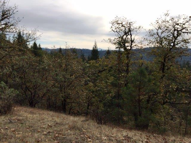 0 Surrey Dr , Grants Pass, OR - USA (photo 4)