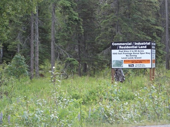 L3 & L6 Kenai Spur Highway, Kenai, AK - USA (photo 5)