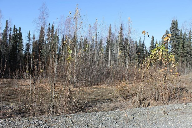 14780 E Gold Miners Way, Willow, AK - USA (photo 1)