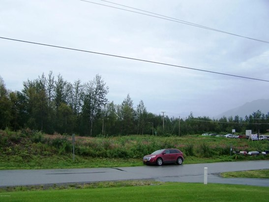 1845 N Monte Vista Drive, Palmer, AK - USA (photo 5)
