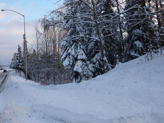 Tr A W Northern Lights Boulevard, Anchorage, AK - USA (photo 5)